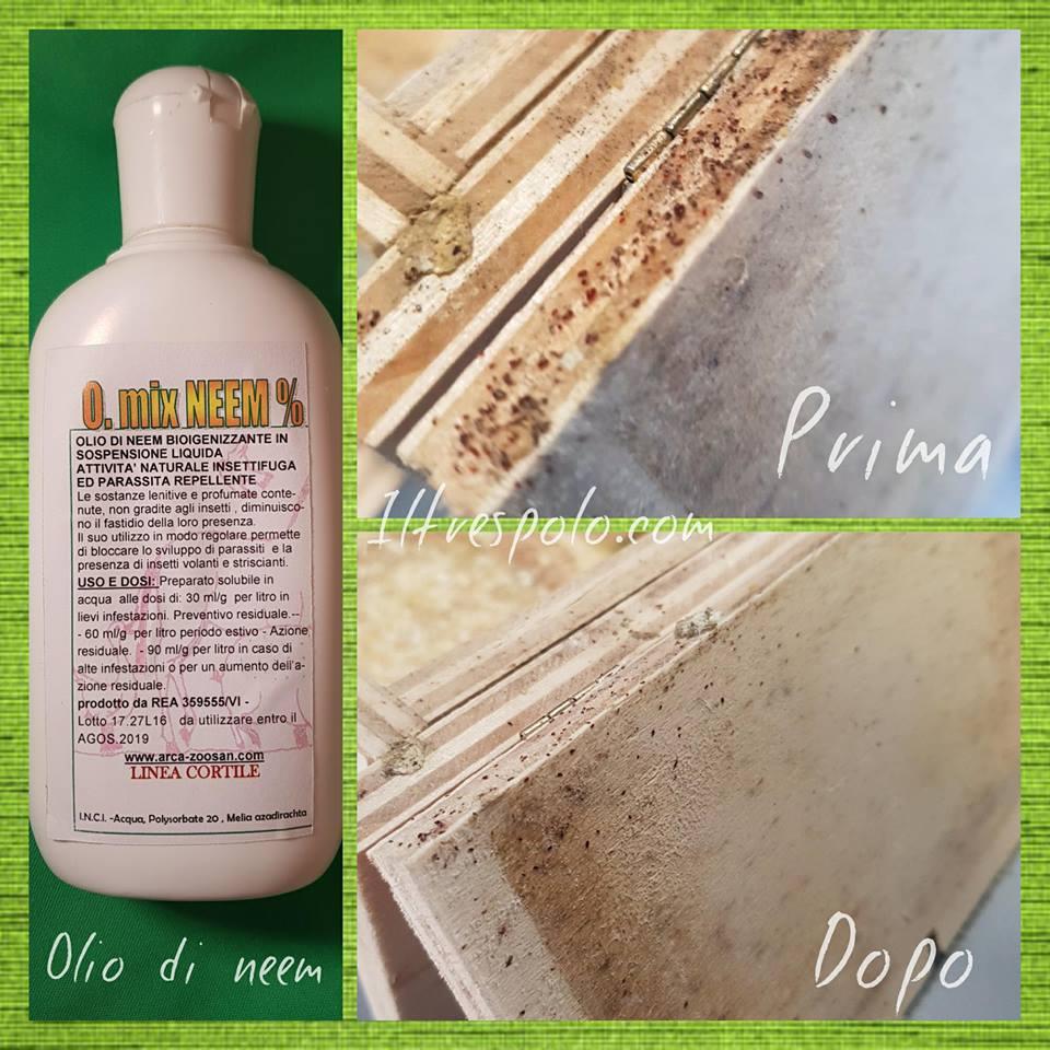 olio di neem antiparassitario
