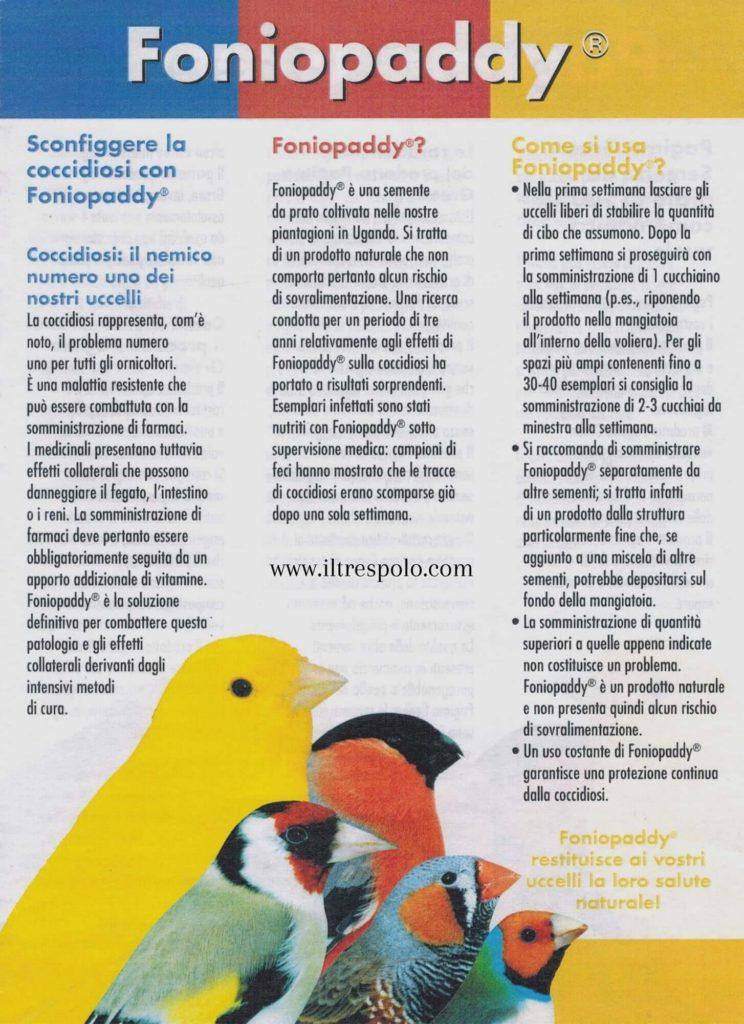 coccidiosi canarini